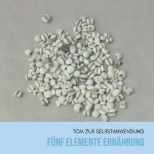fuenf-elemente-ernaehrung