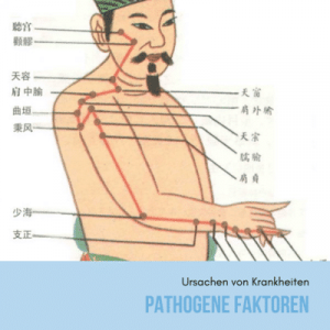 pathogene faktoren in der tcm