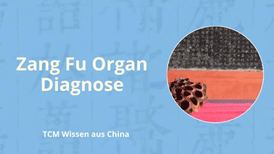 Zang Fu Bian Zheng Organ Diagnose
